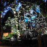 HCU Jahresausstellung 2013 - Nachts im Park